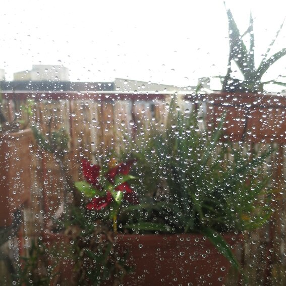 pluie b
