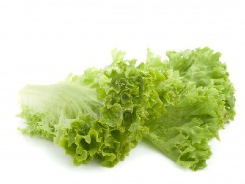 7016462-fresh-lettuce-leaves-isolated-on-white-background