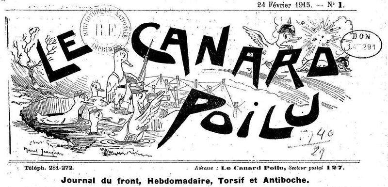 Canard_poilu