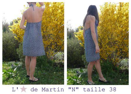 N38_etoile_de_martin