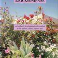 L'hypnose ericksonienne ou le plaisir de réapprendre le confort à son patient, client, parent, ami - dominique wilson