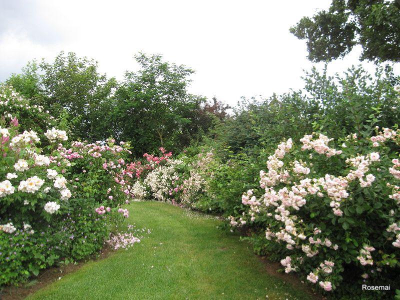 Jardins de Roquelin 18