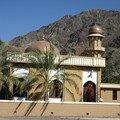 Sultanat d'oman, sur la piste des wadis...