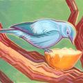 Afro bird