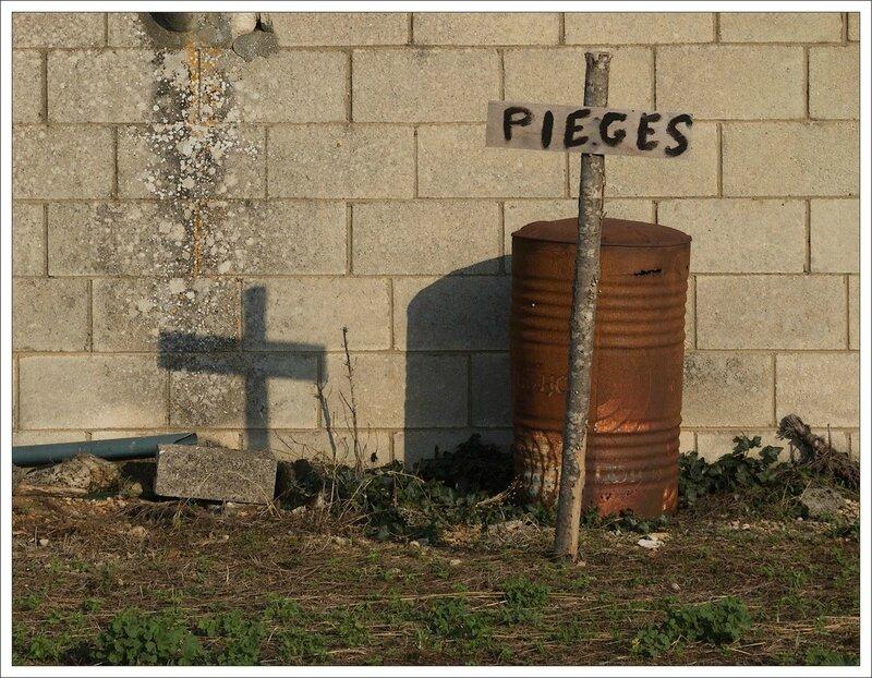 plaine pieges croix 140614 2