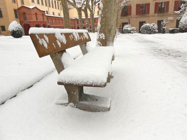 neige (10) 15 janv 2013