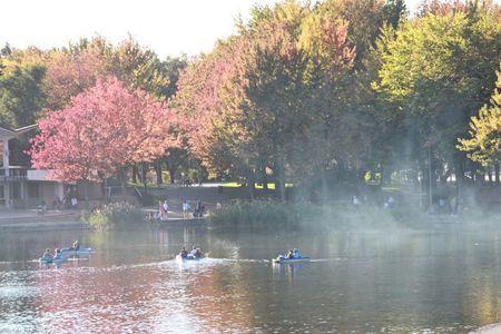 Montagne_Lac des castors steamé