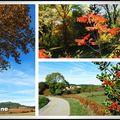 Couleurs d'automne dans la haute vallée