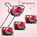 Prendre une rose dans sa main....