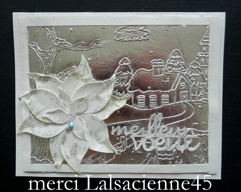 Lalsacienne45
