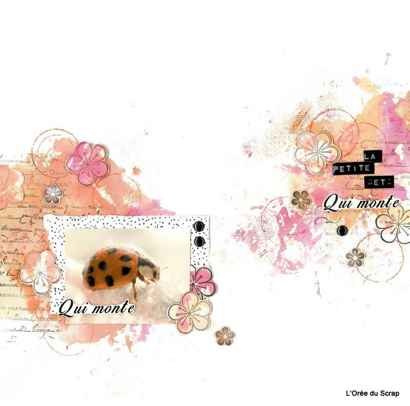Coccinelle et scrap and co