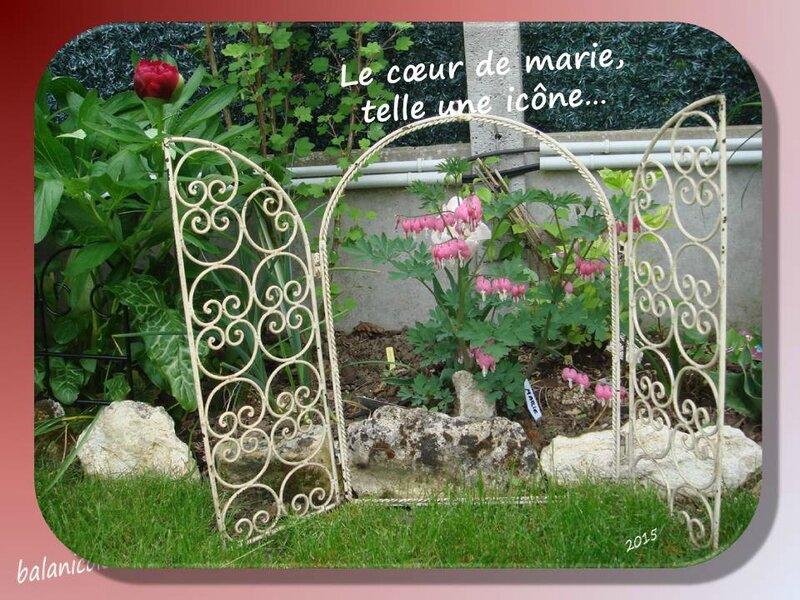 balanicole_2015_mai2_36_icone coeur de marie