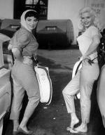 jayne-1957-the_wayward_bus