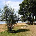 2016-08-11, BRETAGNE (Morbihan)