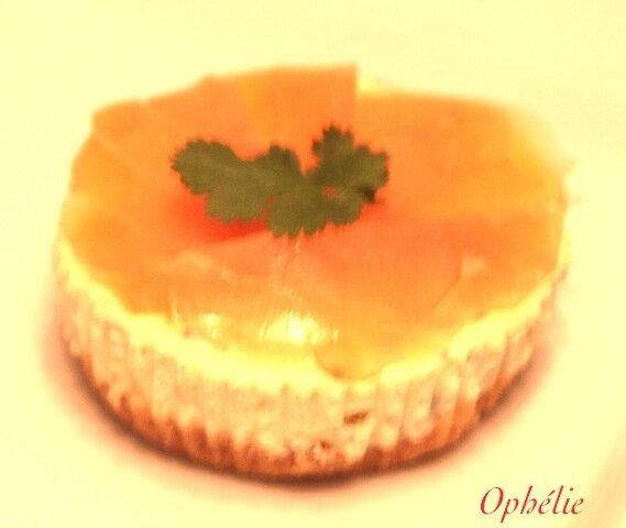 Cheesecake au fromage de chèvre et au saumon