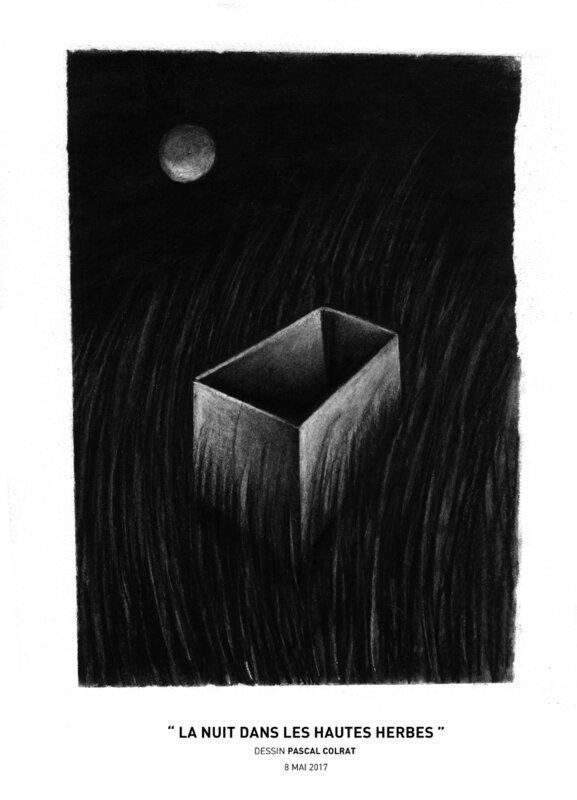 __la_nuit_dans_les_hautes_herbes__