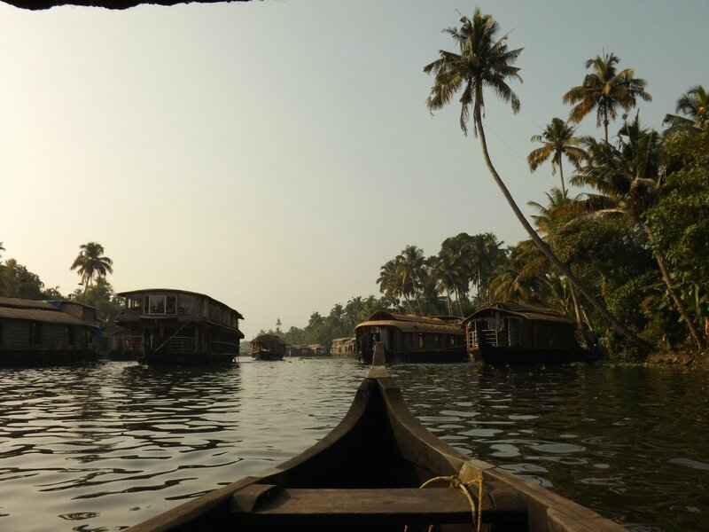 Alleppey Backwaters (2)