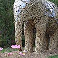 Des éléphants au parc de wesserling