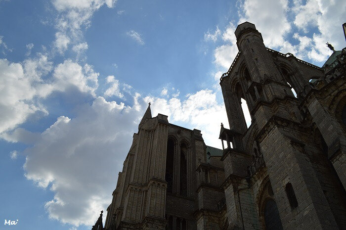 180716_Chartres_Cath_6