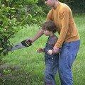 taille des pommiers avec Guillaume
