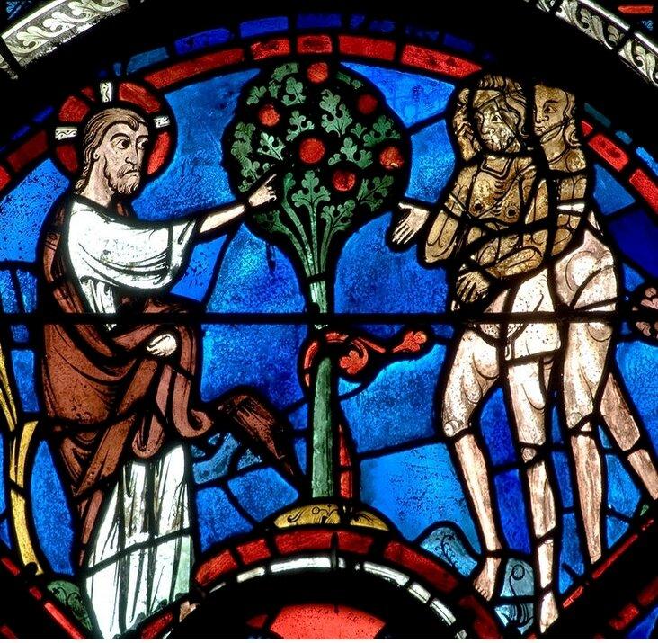 L'arbre de la connaissance bien-mal, cathédrale de Chartres