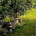 Windows-Live-Writer/jardin_D005/DSCF3907_thumb
