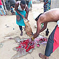 Magie pour le commerce et la prospérité du maître marabout medium kpedji