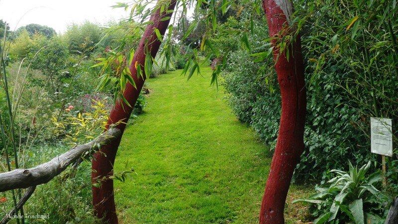 Jardin de la Source 12061663