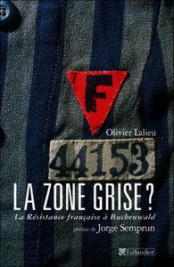 la_zone_grise