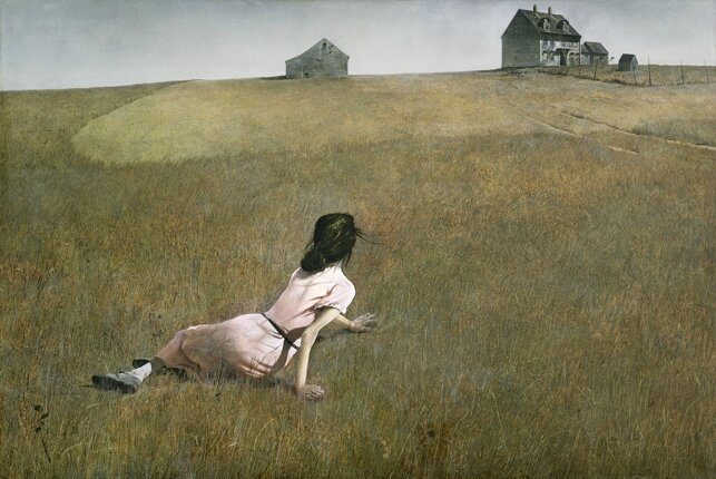 Wyeth-web2