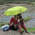 Voici les photos qui participent au 2ème concours photos de saint-gence