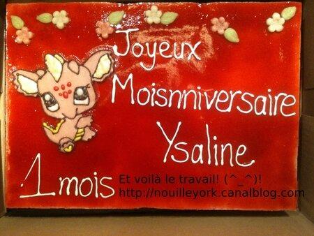 MousseFramboiseYsaline