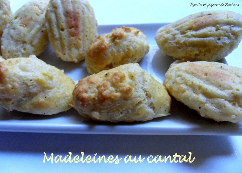 madeleines au cantal1