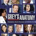 Grey's anatomy - saison 6