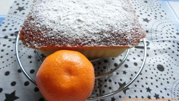 Gâteau léger au yaourt et à la clémentine (2)