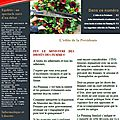 Newsletter n°11 - septembre 2014