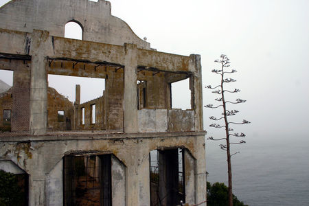 Alcatraz_9