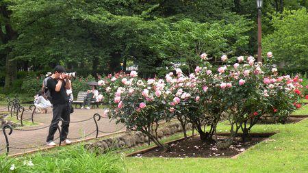Japon_2010_2_180