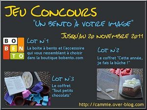 banniere_concours_cammie