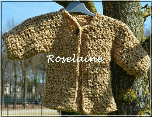 Roselaine112 paletot DROPS