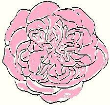 Cultive1_3_004b