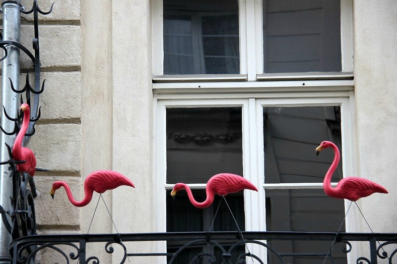 6-Déco flamands roses_4396