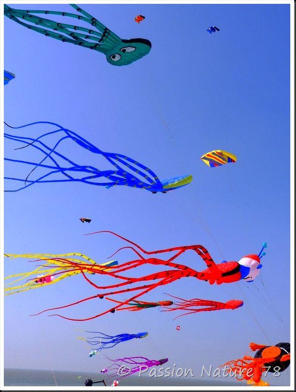 24èmes Rencontres Internationales de Cerfs-Volants