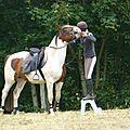 Jeux équestres manchots - parcours de pleine nature après-midi (19)