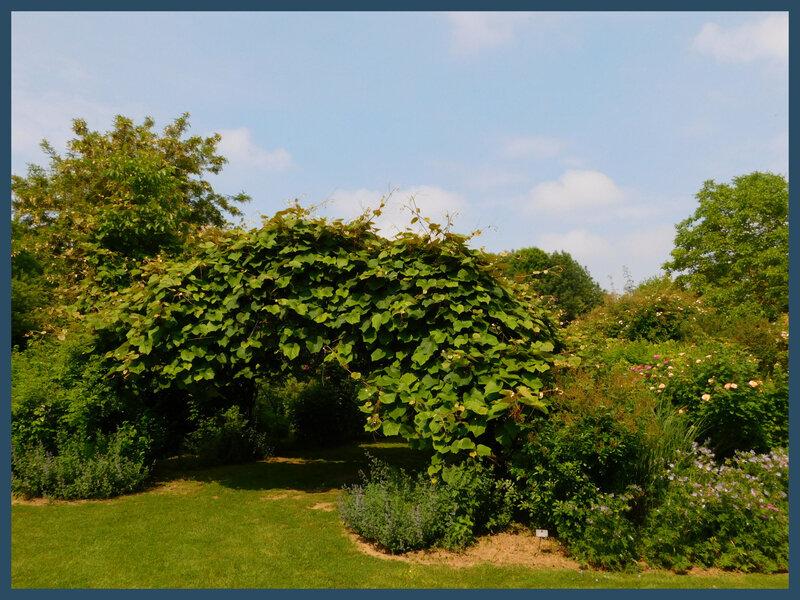 Jardins de Roquelin24