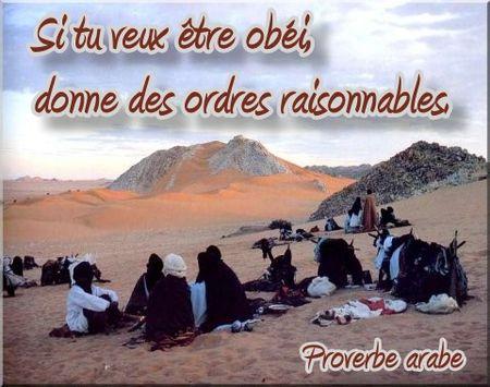 proverbearabe_ordresraisonnables