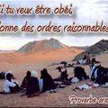 Proverbe arabe ordres raisonnables