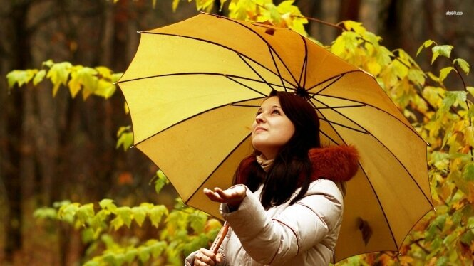 automne-fond03