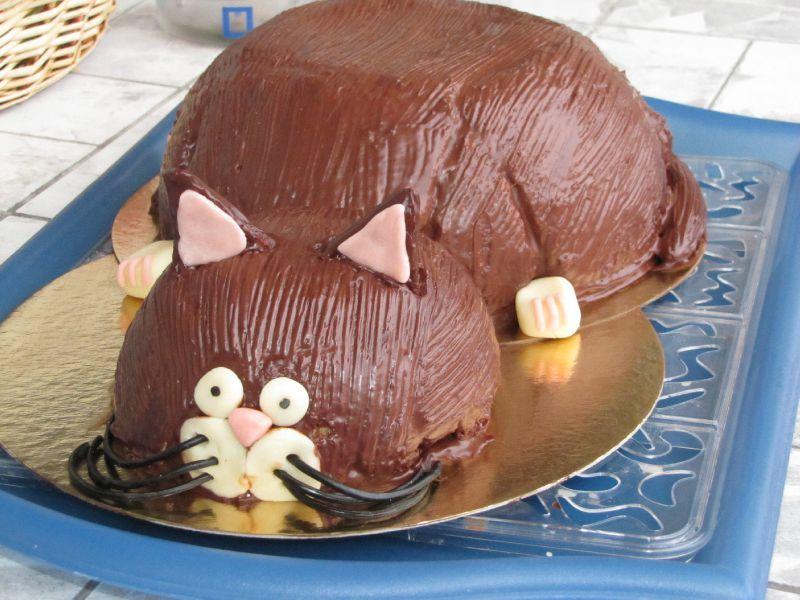 Gâteau Chat En 3d Pour Ceux Qui Aiment Cuisiner