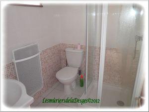 salle de bains blog